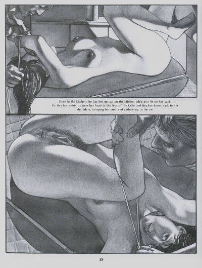 bdsm sex comics